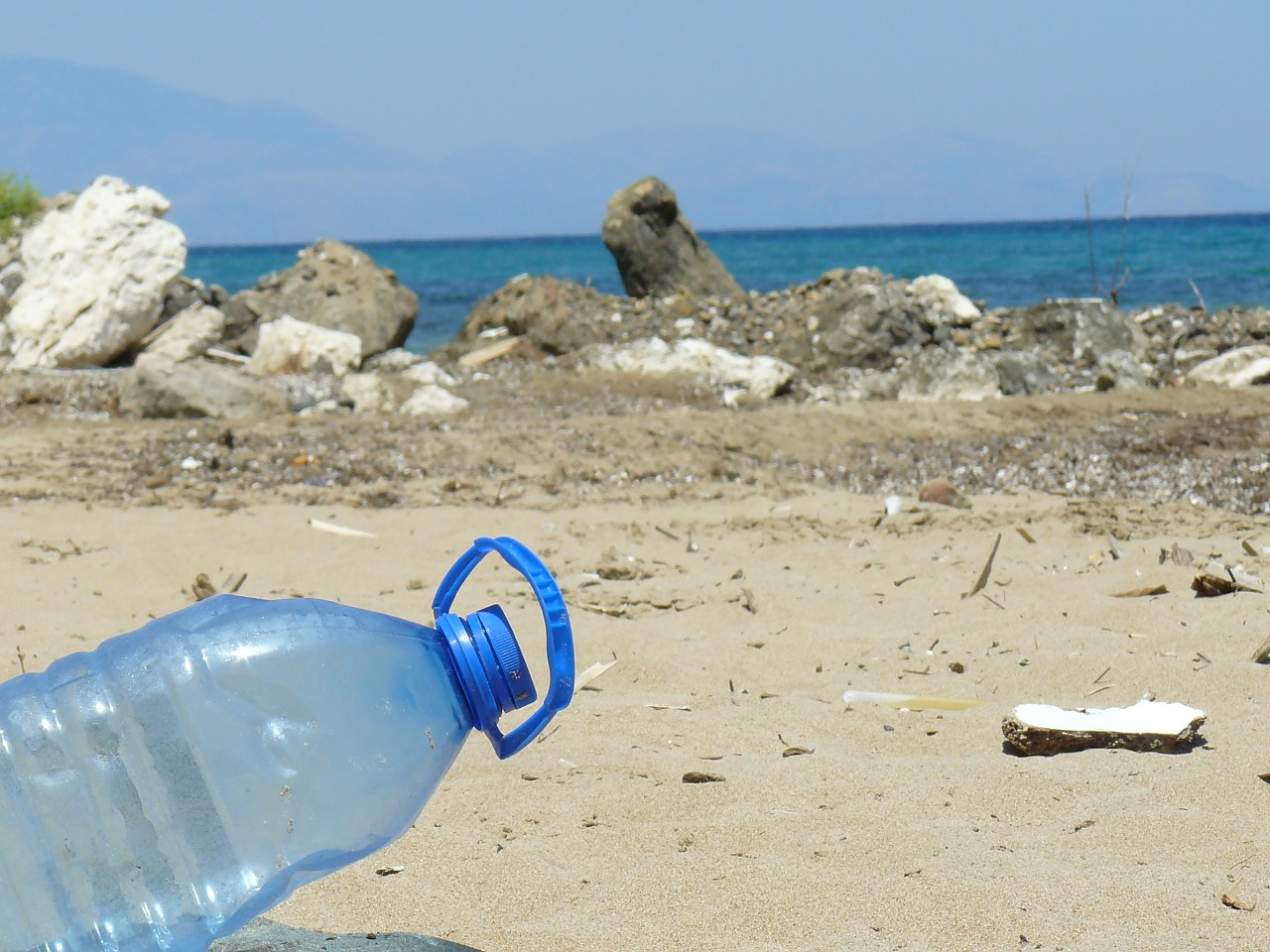 Plastic bans across the globe: How they might affect you
